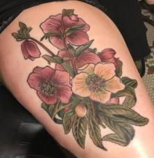 hellebore, herb tattoo, witch tattoo, witchcraft, vegan ink, vegan tattoo, female artist, amanda, amanda stiehls, colby, phoebe aceto, phoebe, carol oddy, amy jiao, ithaca, cortland, auburn, syracuse, collegetown, college town, the best tattoos, tattoo ideas, unique tattoo ideas, unique tattoos, the best tattoo shop, the best tattoo shops near me, pretty tattoos, watercolor, watercolour, blackwork, black work, traditional, shoulder piece, back piece, arm tattoo, hand tattoo, portrait, illustrative, mandala, geometric, 3d, realism, traditional, piercing, piercings, tattooing, black dragon, black dragon tattoo, black dragon tattoo company, tara morgan, tattoos by tara, flowers, tattoo studio, body art, simple tattoos, minimalist tattoos, crystals, healing crystal tattoos, flower tattoo ideas, healing crystals, mystical tattoos, tattoo studios near me, microblading, josh payne, medusa tattoo, steihls, ink masters, gallery, art, custom tattoos, hand of fate, sacred art, ascend gallery, tattoo shops around ithaca, cortland tattoo shops, cortland tattoo studio, woman tattoo artist, botanical tattoo, floral tattoo, nature tattoo