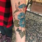 morning glory tattoo, vegan ink, vegan tattoo female artist, amanda, amanda stiehls, colby, phoebe aceto, phoebe, carol oddy, amy jiao, ithaca, cortland, auburn, syracuse, collegetown, college town, the best tattoos, tattoo ideas, unique tattoo ideas, unique tattoos, the best tattoo shop, the best tattoo shops near me, pretty tattoos, watercolor, watercolour, blackwork, black work, traditional, shoulder piece, back piece, arm tattoo, hand tattoo, portrait, illustrative, mandala, geometric, 3d, realism, traditional, piercing, piercings, tattooing, black dragon, black dragon tattoo, black dragon tattoo company, tara morgan, tattoos by tara, flowers, tattoo studio, body art, simple tattoos, minimalist tattoos, crystals, healing crystal tattoos, flower tattoo ideas, healing crystals, mystical tattoos, tattoo studios near me, microblading, josh payne, medusa tattoo, steihls, ink masters, gallery, art, custom tattoos, hand of fate, sacred art, ascend gallery, tattoo shops around ithaca, cortland tattoo shops, cortland tattoo studio, woman tattoo artist, botanical tattoo, floral tattoo, nature tattoo, tattoo artists near me